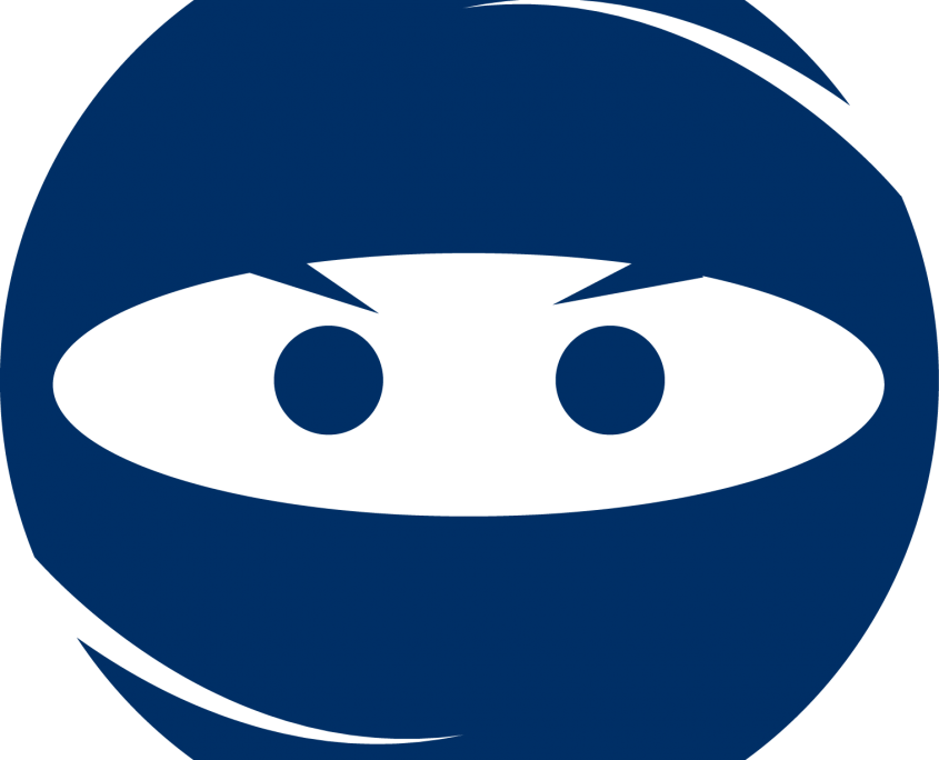 case study ninja sarah dillingham